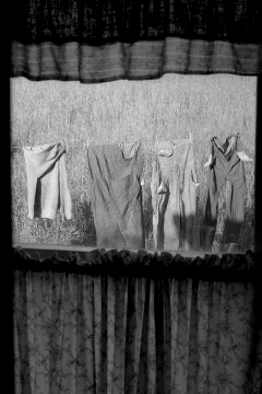 Laundry - Copyright Zimbel
