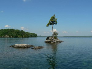 """One Tree Island, Skeleton Lake, Muskoka"", Photo: Memotions"
