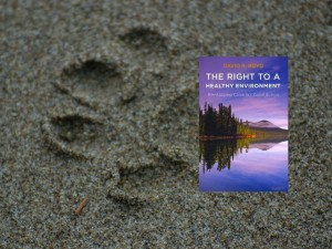 Review: Boyd, The Right to a Healthy Environment