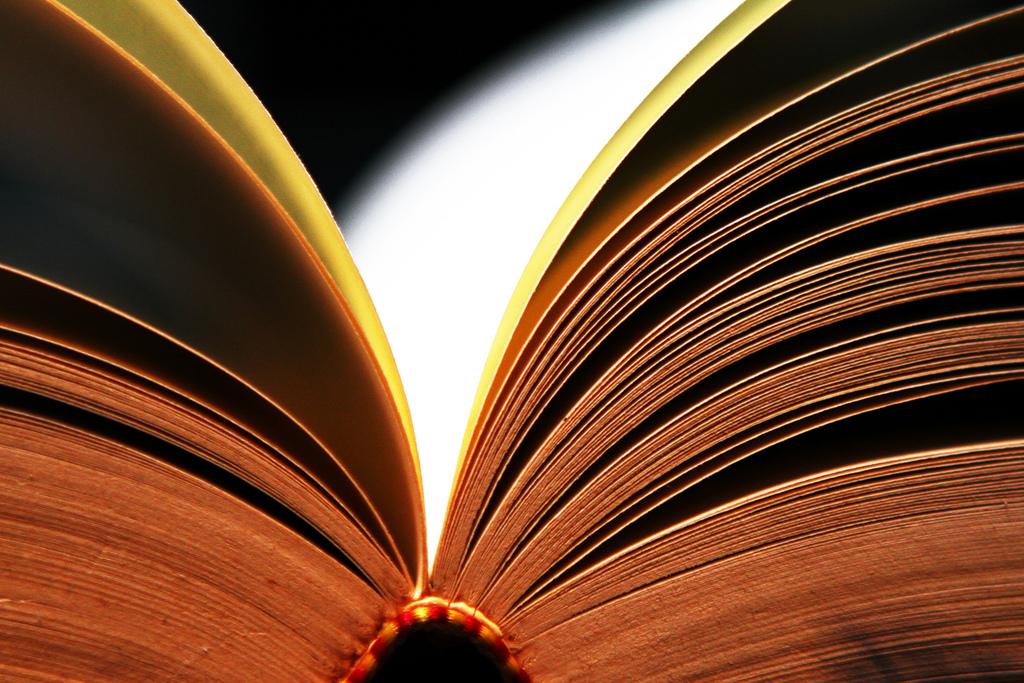 """""""Read II"""" by Daniel Go"""
