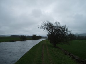 Leeds and Liverpool Canal, near Skipton, April 2012. Source: David Zylberberg