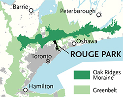 map_rouge_urban_park