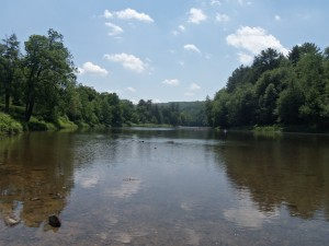 Clarion River, Cook Forest State Park, Pennsylvania