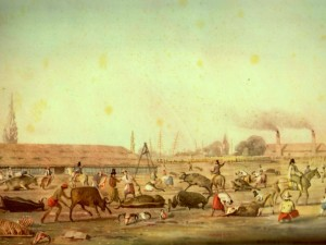 Impression of a Buenos Aires slaughterhouse by Charles Pellegrini, 1829.