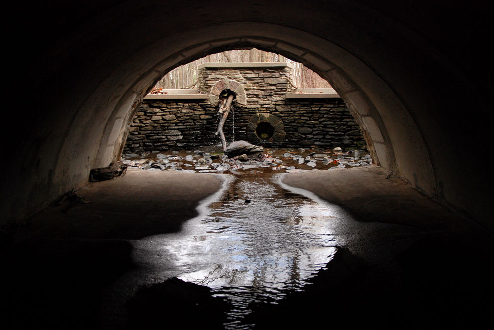 """Lemon Creek, Staten Island, New York, """"Under Rossville Avenue, a clogged control structure filters the water out of a small pond."""" Photo Credit: Nathan Kensinger"""