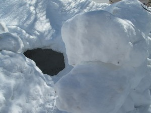 Hobbit Hole with Snow-Boulder Shelter Wall, Fredericton, March 2015