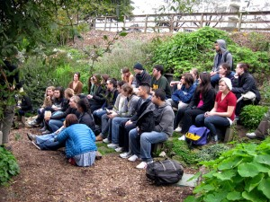 "David Silver, ""Garden project and green media students..."", Flickr"