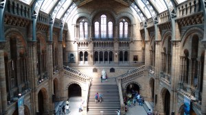 Natural History Museum, London. Source: S.Kheraj