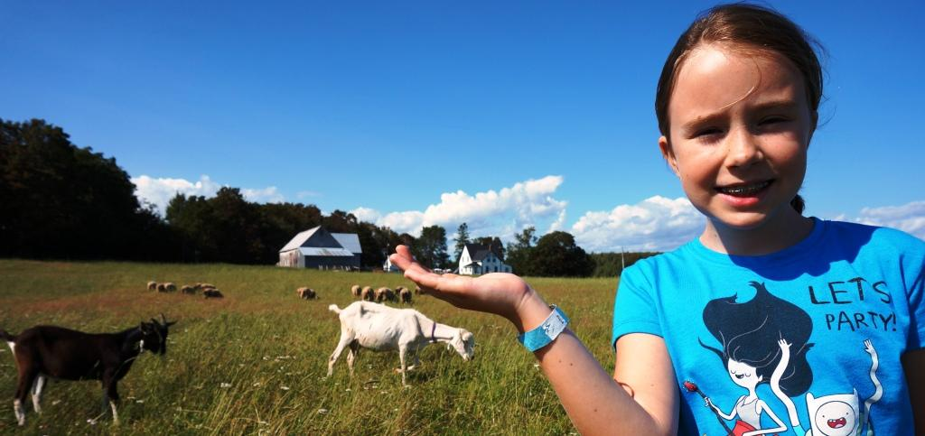 Sadie, goats, & sheep, New Argyle farm, PEI, 2014.