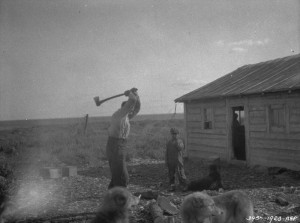 A.W. Boland splitting firewood Fort Franklin, Great Bear Lake, N.W.T. (1928) Source: Library and Archives Canada, 3364562