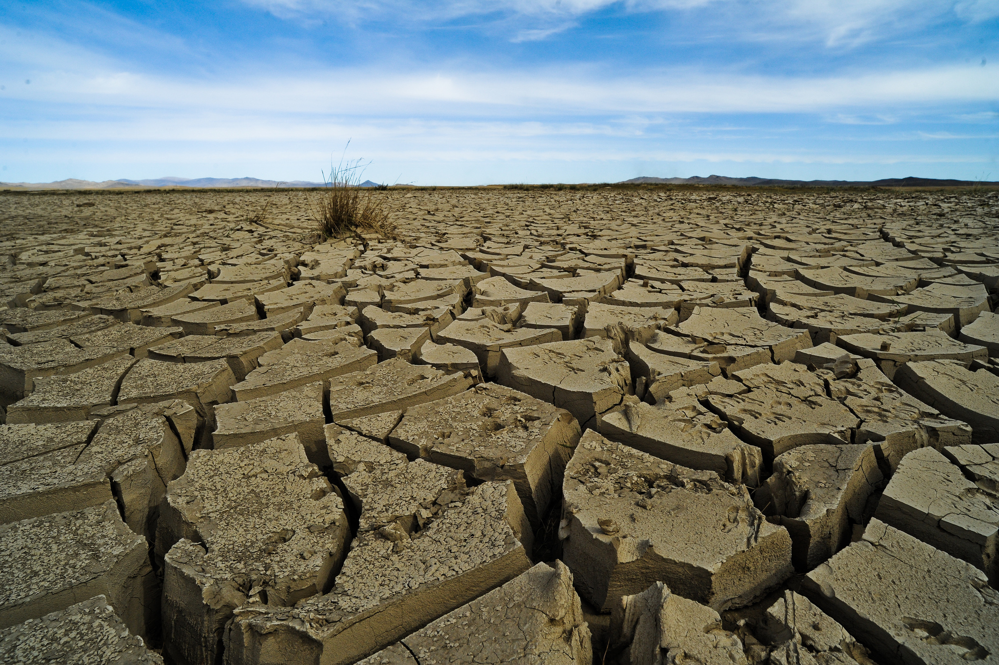 world history climates essay Ap world history: period 4  an often difficult period of adjustment to new climates, disease environments,  ap world history timeline period 4:.