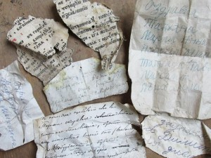 Scraps of notes and letters, some dating back centuries, were discovered in birds' nests. Photo: Courtesy of Audubon.org and Zvenigorod Historical and Architectural Museum