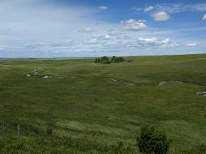 Old Women's Buffalo Jump, Alberta