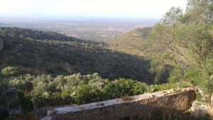 View of Mallorca from Santuari de Cura, photo by author