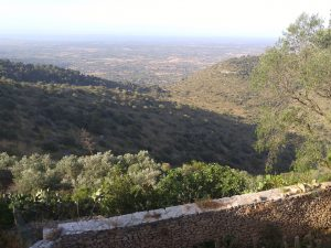 View of Mallorca from Santuari de Cura, photo by author