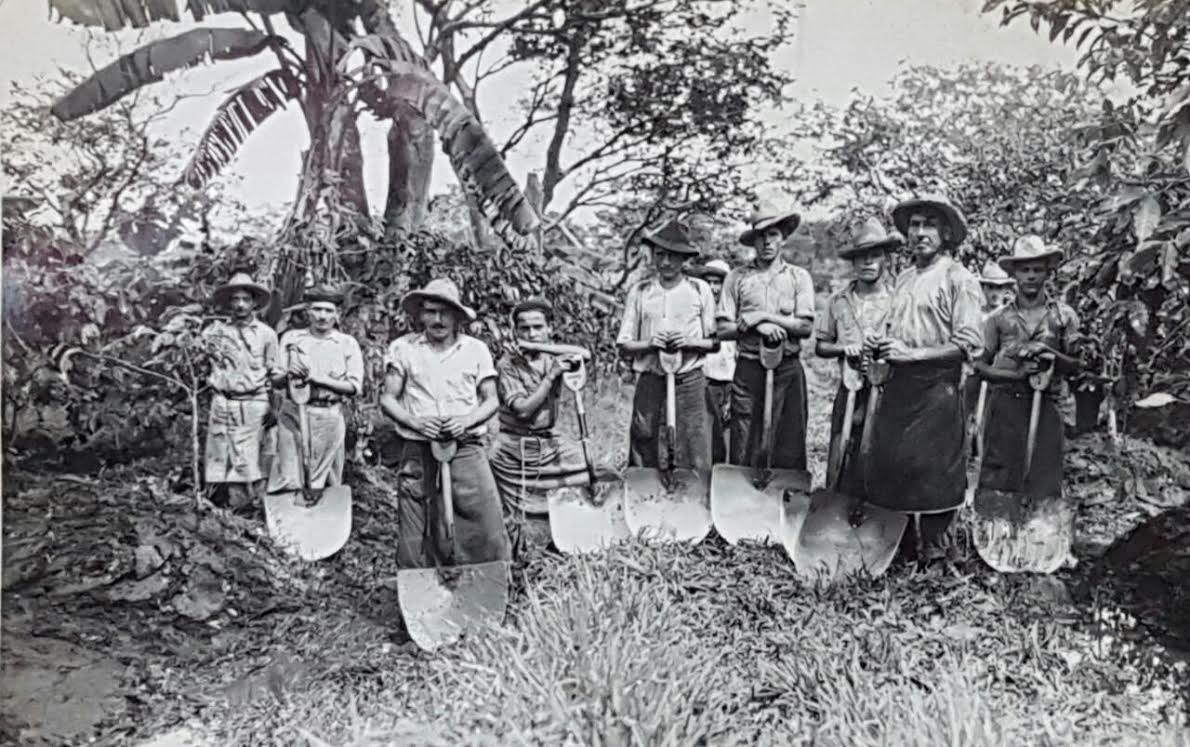 Costa Rican coffee labourers; shade-grown coffee (ca.1950s) source: Album Manuel Chacón Hidalgo