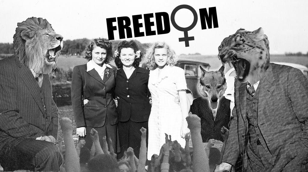 Feminism 2K14, idc collage, https://www.flickr.com/photos/73735208@N04/15257540381
