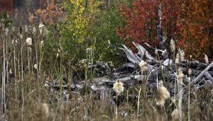 "Don Brubacher, ""New Brunswick Autumn Colours,"" Flickr"