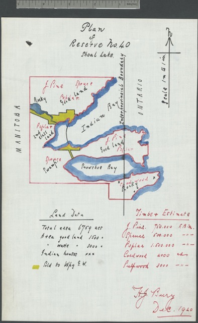 """""""Plan of Reserve No. 40,"""" Shoal Lake, December 1920, Library and Archives Canada, Mikan 3719724."""