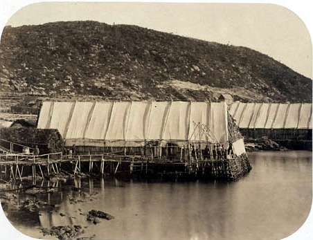 Outside view of fishing stages on the  Petit Nord, 1857-1859. Paul-Émile Miot Collection, Libraries and <br>Archives Canada, PA-202292.